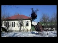 Un backflip raté